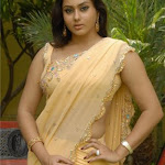 South Indian Hot Actress Namitha Exclusive Photo Shoot