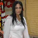 Exclusive Hot N Sexy Wallpapers,photos Of Hot Indian Actress Ankitha