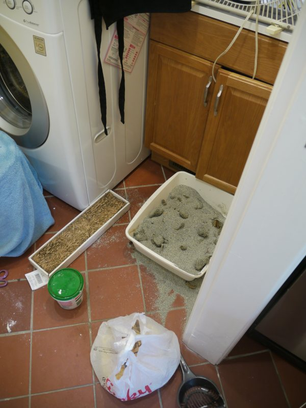 Ben Krasnow Concealing A Cat Litter Box In A Utility Closet