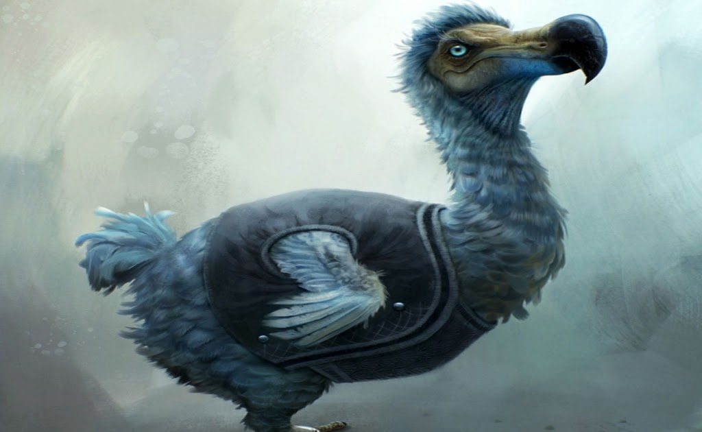 Animated Wallpaper Android Tablet Dodo Wallpaper Download Free Download Wallpaper