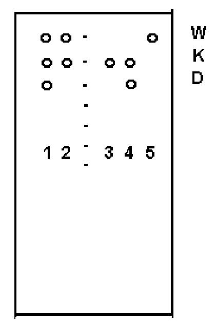 Murray Code