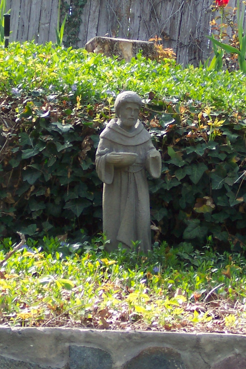 Gnome In Garden: FeliciaEvita: Clean Up Your Garden With A Gnome