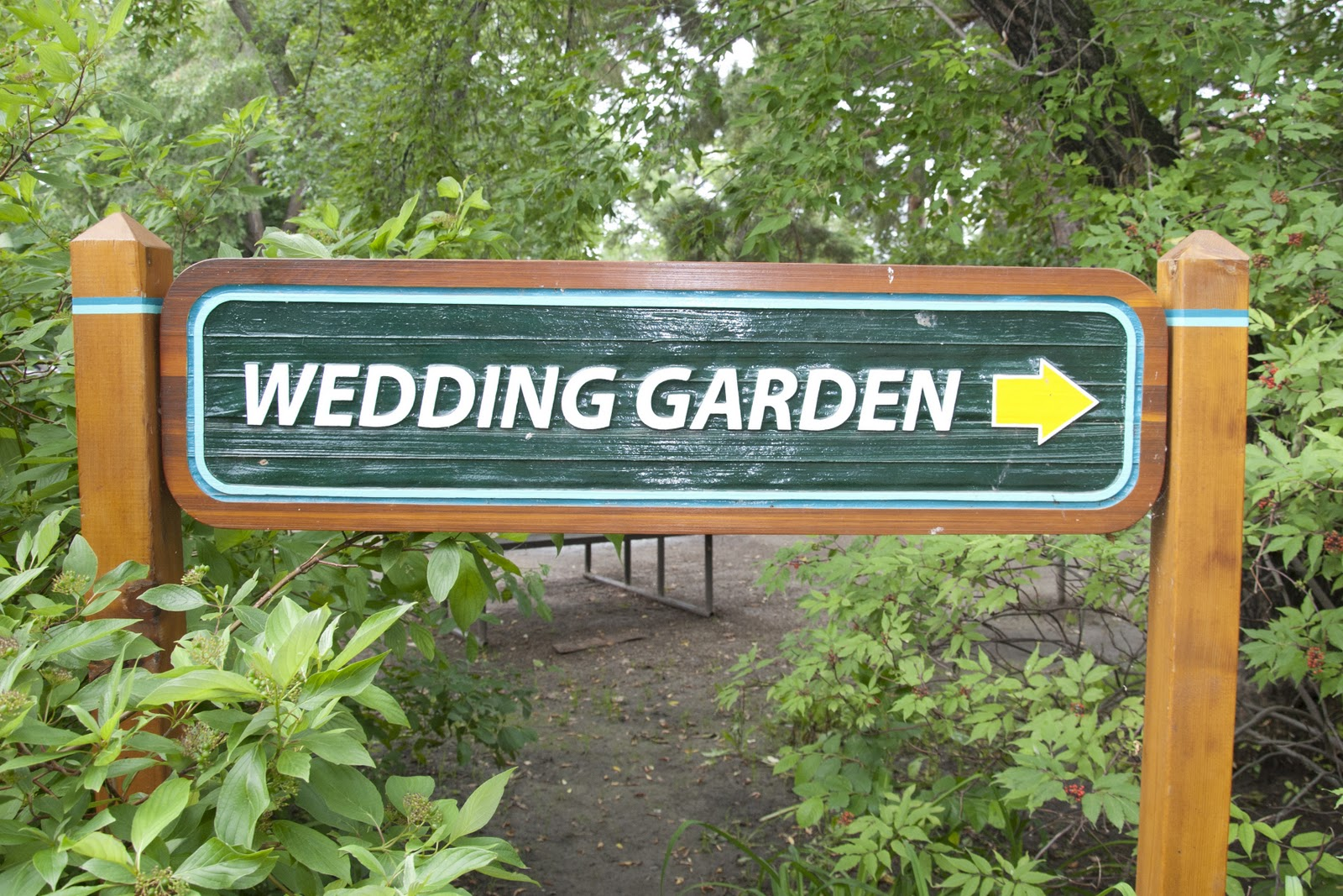 Saskatoon Wedding Photographer Forestry Farm A Great Way To Start Off Any Day Little Mimosa