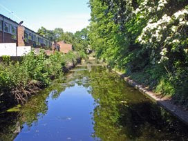 Croydon Canal in Betts Park