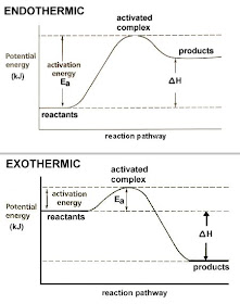 Dr Will McCarthy's Science Site: ENDOTHERMIC vs EXOTHERMIC ...