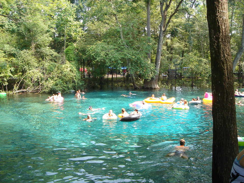 Coffeemom S Realm Ginnie Springs