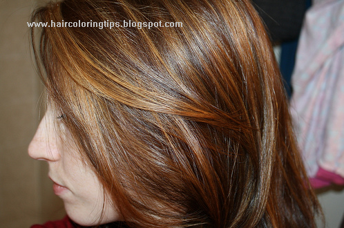 Dark Red Hair Highlights Prom Hairstyles