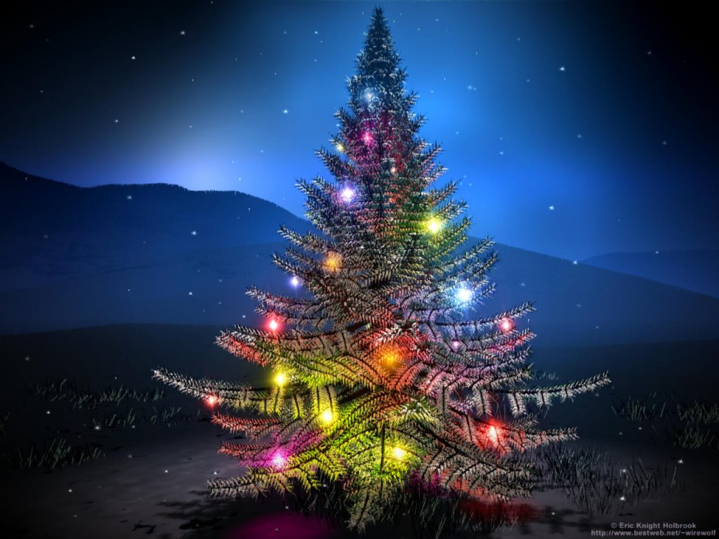 Incluyendo pero no limitando 104 navidad versus diez - Planta navidad ...