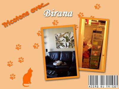 tricotons avec Birana
