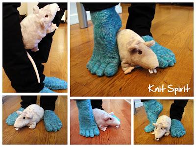 tricot chaussette rat