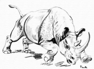 Rinoceronte furioso