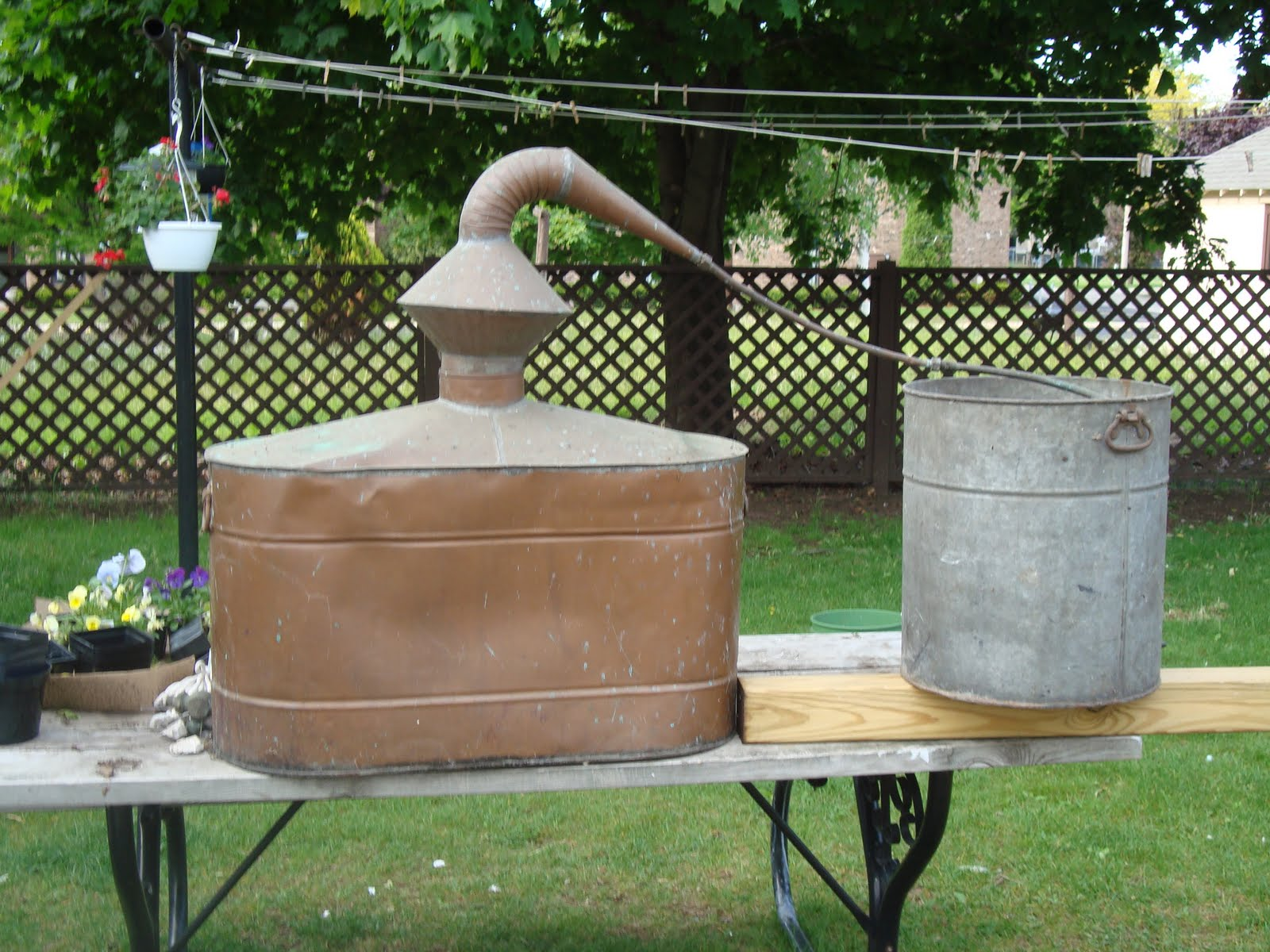 antique moonshine still - photo #7