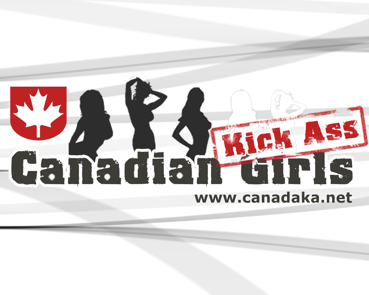 Canadian country community comes together with country kicks cancer's ass benefit concert