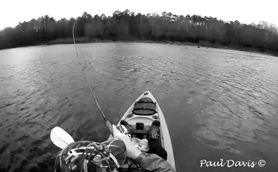 Zebco Omniflex Fishing Line Review