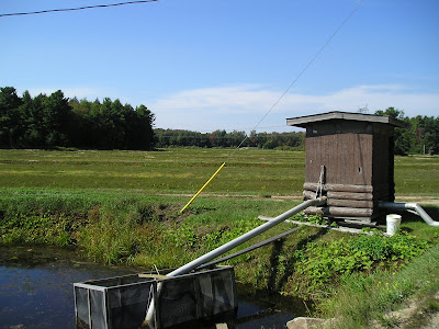 Pumphouse in the Wahta Mohawk cranberry bog