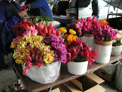 Owen Sound Farmers Market Cut Tulips
