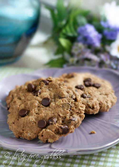 Gluten-Free Goddess Recipes: Gluten-Free Oatmeal Chocolate ...