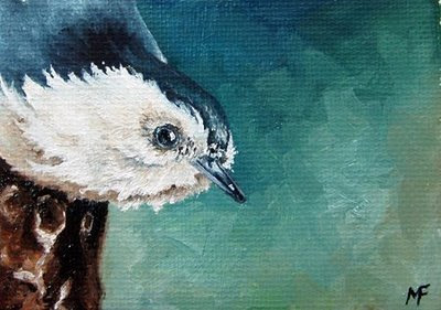 nuthatch oil painting