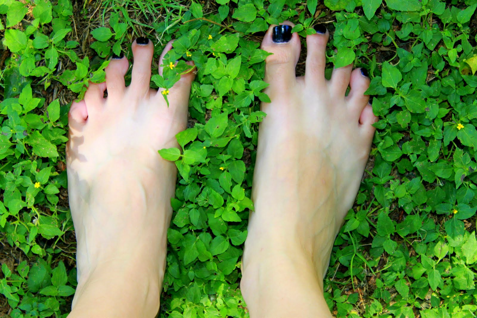 Lauren Losefast  Summertime 227a35b011a3