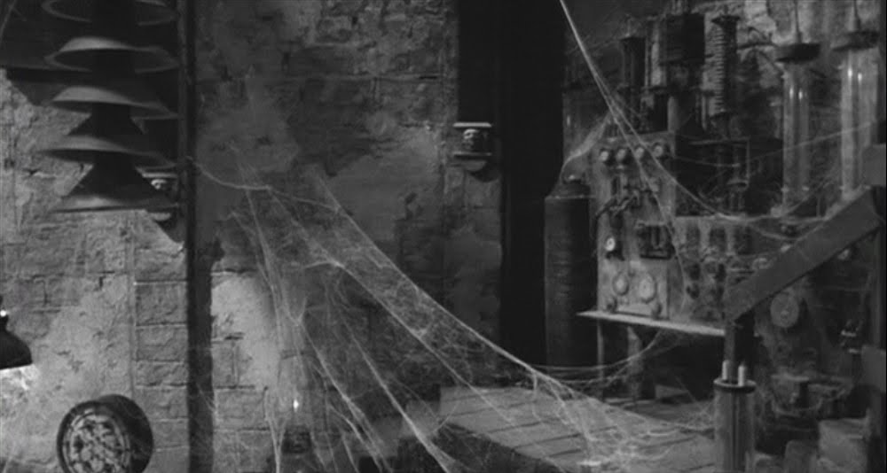 Aninimal Book: The Obscure Hollow: Young Frankenstein (1974)