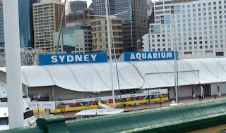Sydney Australia: Darling Harbour