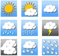 Neurogenetics How Much People Depend On Weather Reports