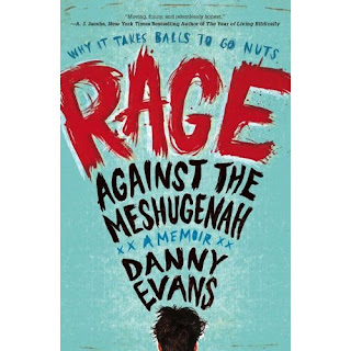 Book cover - Rage Against the Meshugenah