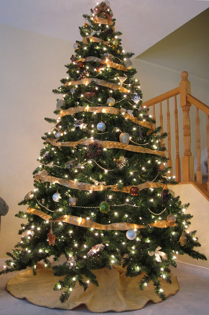 A Family Tree of Holidays - Christmas Trees: Christmas ...