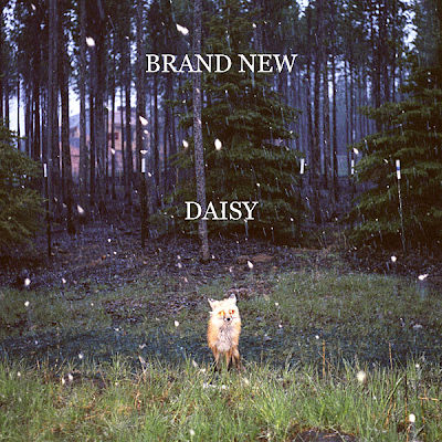 Daisy cover art