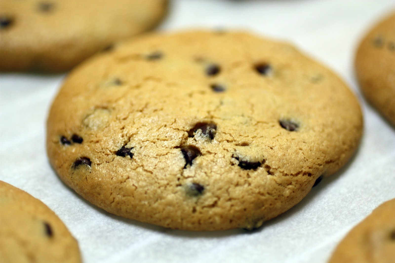 Paleo Chocolate Cookies We recently had the honor of