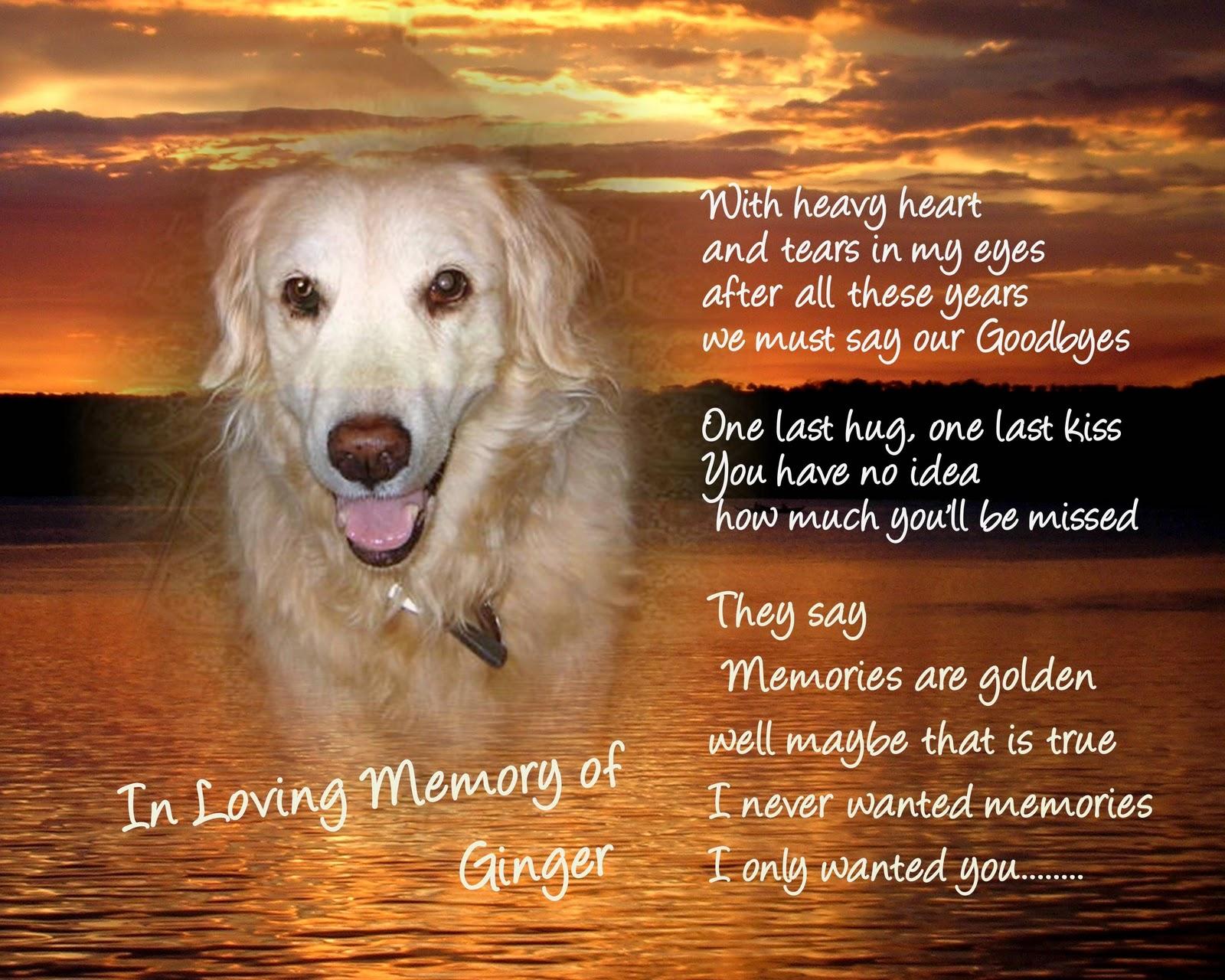 Headstone Sayings For Dog