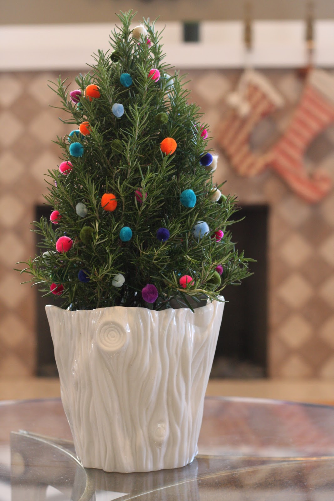 Rosemary Christmas Tree Home Depot.Christie Chase 271 Festive Pom Poms