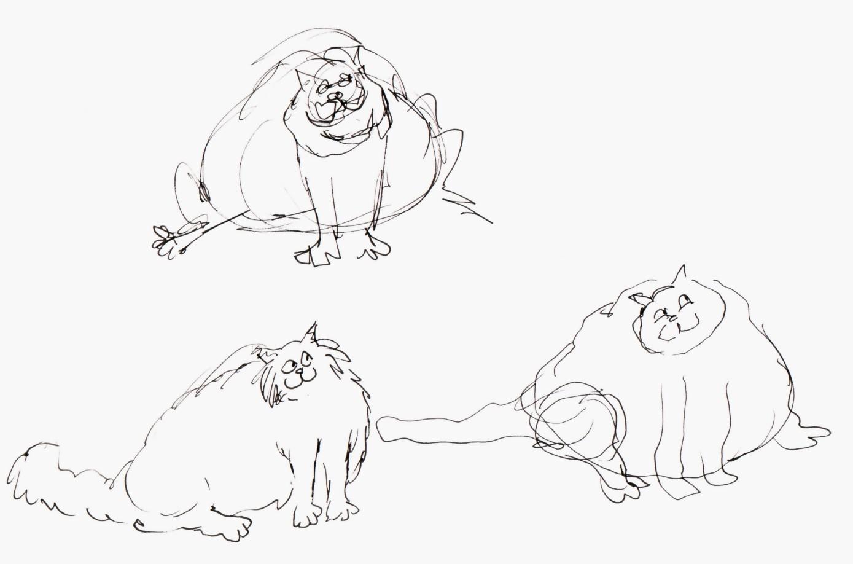Cat 4 Wiring
