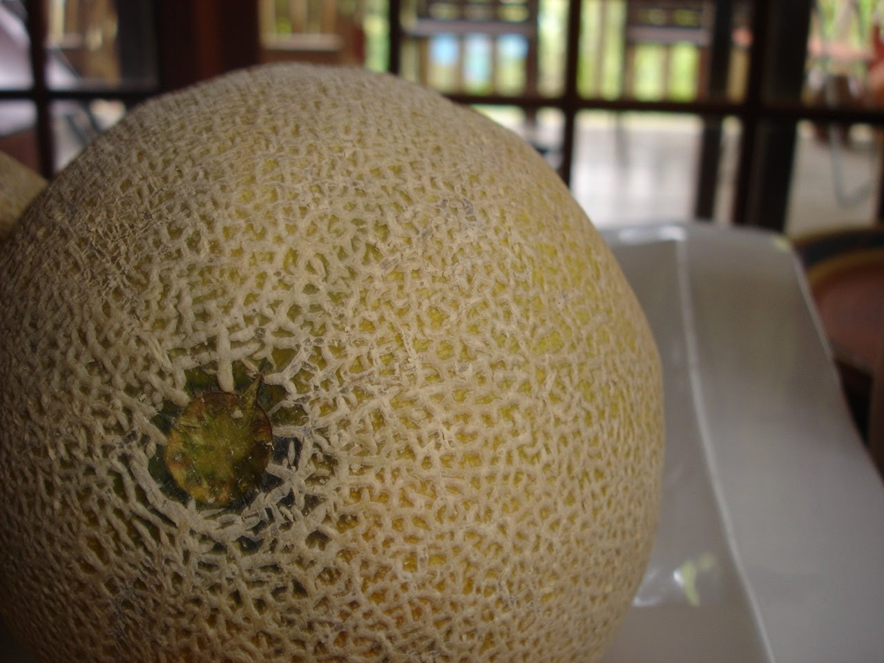 A Singaporean Uncle In Australia What Do You Look For When Selecting A Rockmelon To Make Sure It Is Good Inside Step by step easy to follow. a singaporean uncle in australia blogger