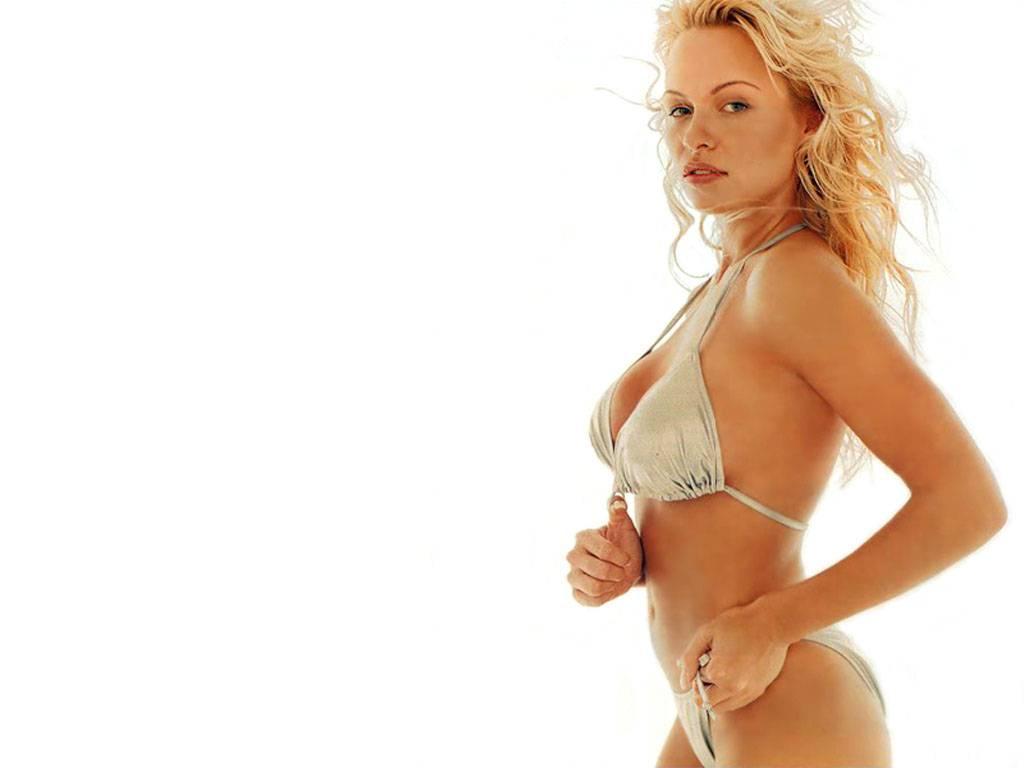 Bikini wallpapers of pamela anderson-7408