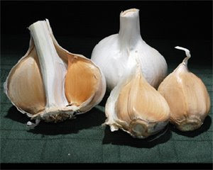 Staph Infection Resources: Garlic - A Natural MRSA Treatment