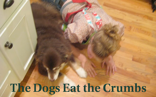 The Dogs Eat the Crumbs
