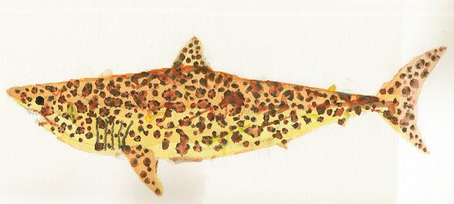 pescadotes: jaguar shark