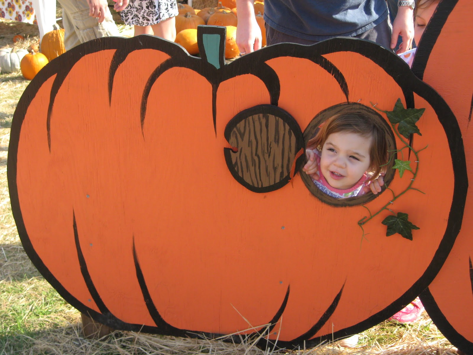 Mcdowell Family Times Pumpkin Patch