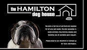 Hamilton Dog House: Pet Supplies
