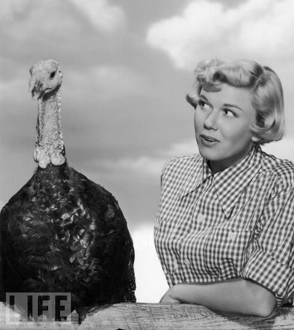 WEIRDLAND Happy Thanksgiving Day