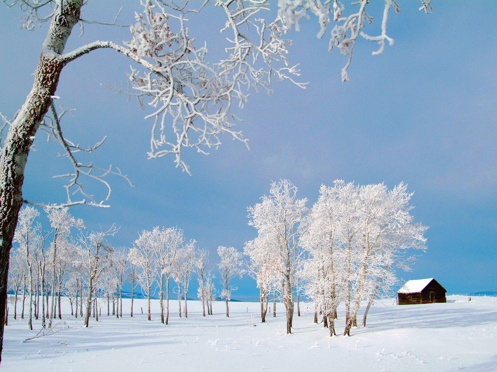 s1600 winter achtergronden winter - photo #6