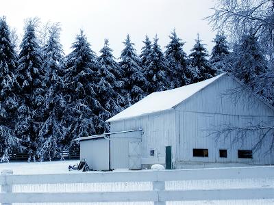 snow winter seasons