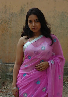 chicks in saree