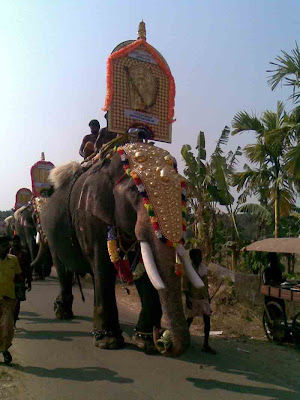 kerala-elephant-sreenivasan,elephants,kerala-elephant-photos,elephant-names,domestic elephant,temple-elephant
