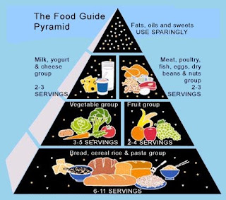 What Should I Eat Right Now Generator Eating A Balanced Diet Means