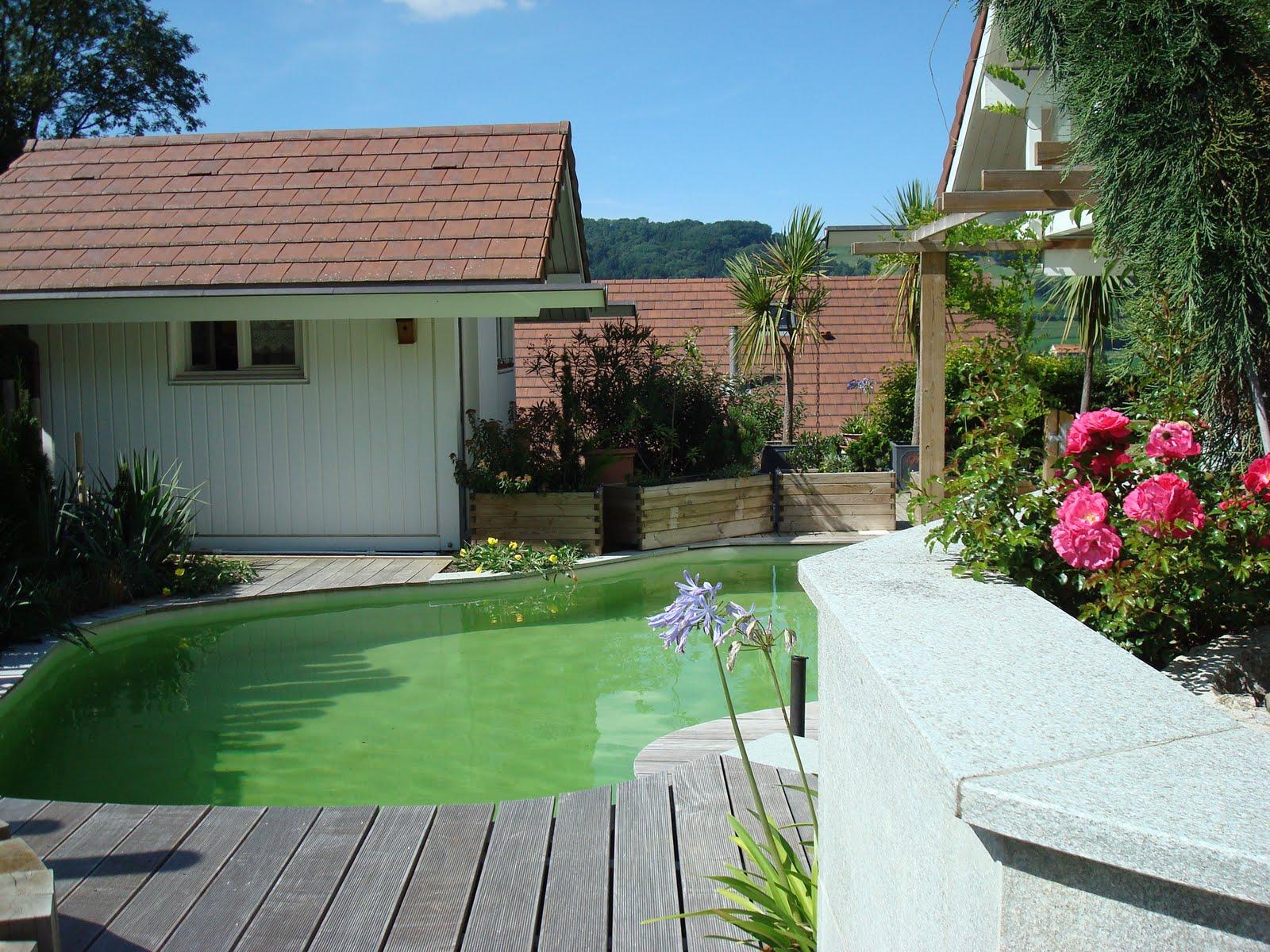 paysagiste et am nagement de jardin thonon et annemasse murets cl tures. Black Bedroom Furniture Sets. Home Design Ideas