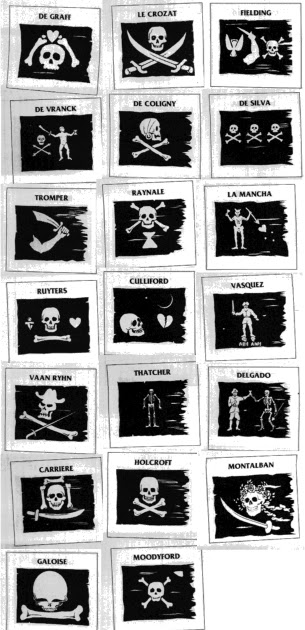 The New Age Information Station: #33 Know Your Pirate Flags