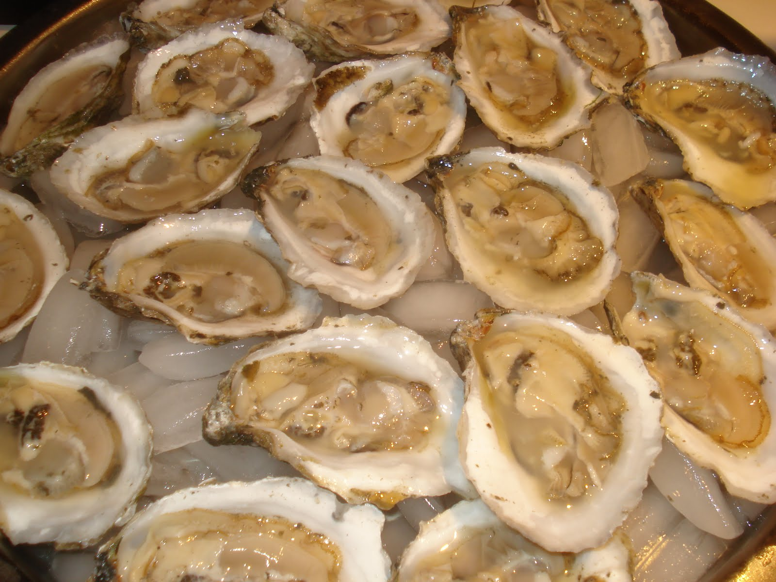 Go Shuck An Oyster H M Terry Co Inc Sewansecott Oysters