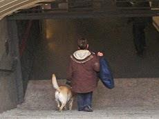 Metro estudia abrir la red a bicicletas y mascotas. ¿Que opinas?